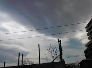 2011.4.8-2.jpg