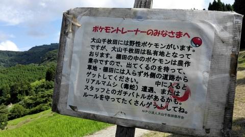 大山千枚田(3).jpg