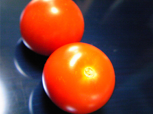 完熟ミニトマト1.jpg