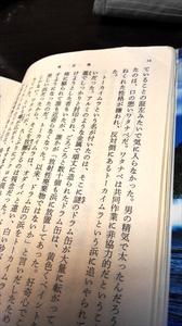 東京島 (1)_R.jpg