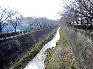 稲城市役所裏.jpg
