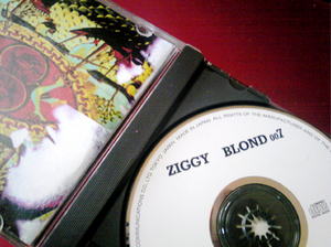 ZIGGY BLOND007.jpg