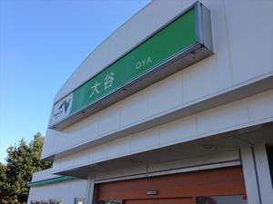 oya-1.JPG